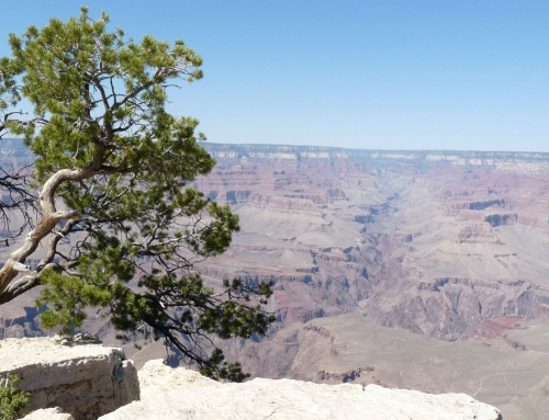 Photography – Grand Canyon